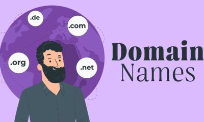 Everything You Need to Know About Domain Names