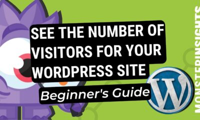 How To Check The Number Of Visitors For Your WordPress Website (Beginner's Guide)