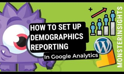 How to Set Up Demographics Report in Google Analytics For Your WordPress Site