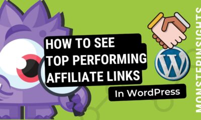 How to See the Top Performing Affiliate Links In WordPress