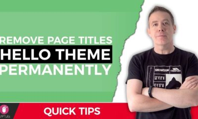 Elementor Hello Theme Page Title - How To Remove