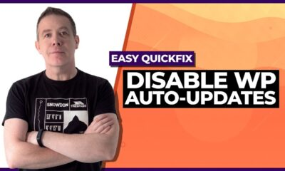 How To Disable WordPress 5.5 Auto-Update