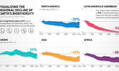 On the Decline: A Look at Earth's Biodiversity Loss, By Region