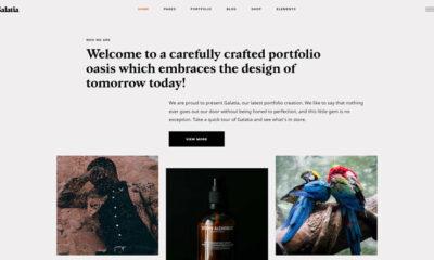 10 Eye-Catching WordPress Pinterest Themes