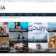 10+ Top Rated WordPress Themes with Top-Notch Support