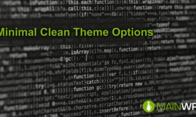 Minimal Clean Theme Options for your Child Sites