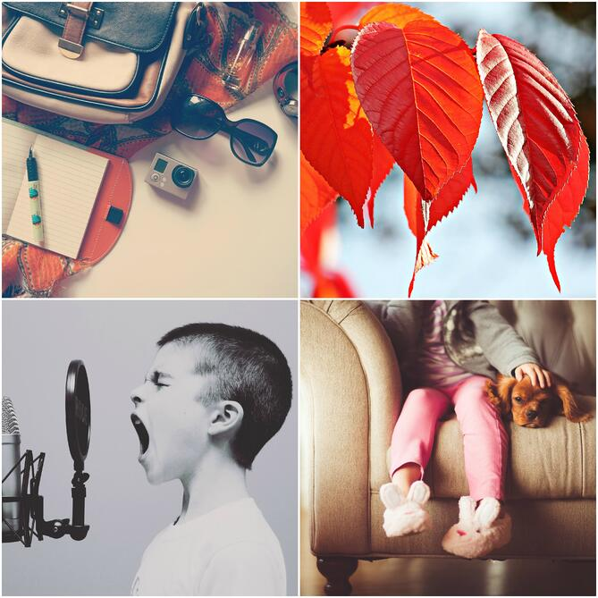 collage of free stock photos by Pixabay
