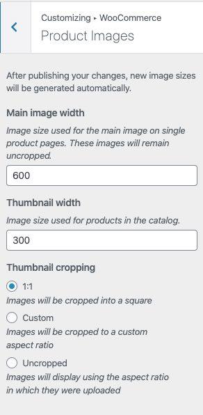 image sizing in customizer