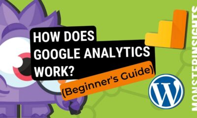 How Does Google Analytics Work? (Beginners Guide)