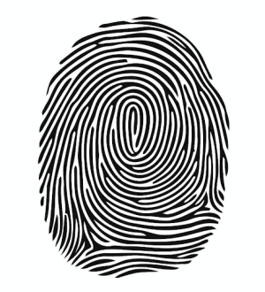 Biometric Systems such as facial or retinal recognition, or fingerprints.