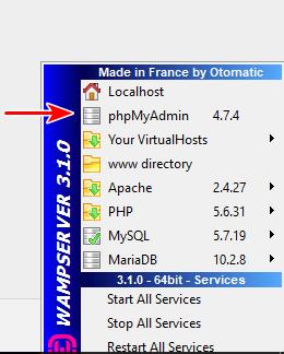 Access phpmyadmin on WAMP
