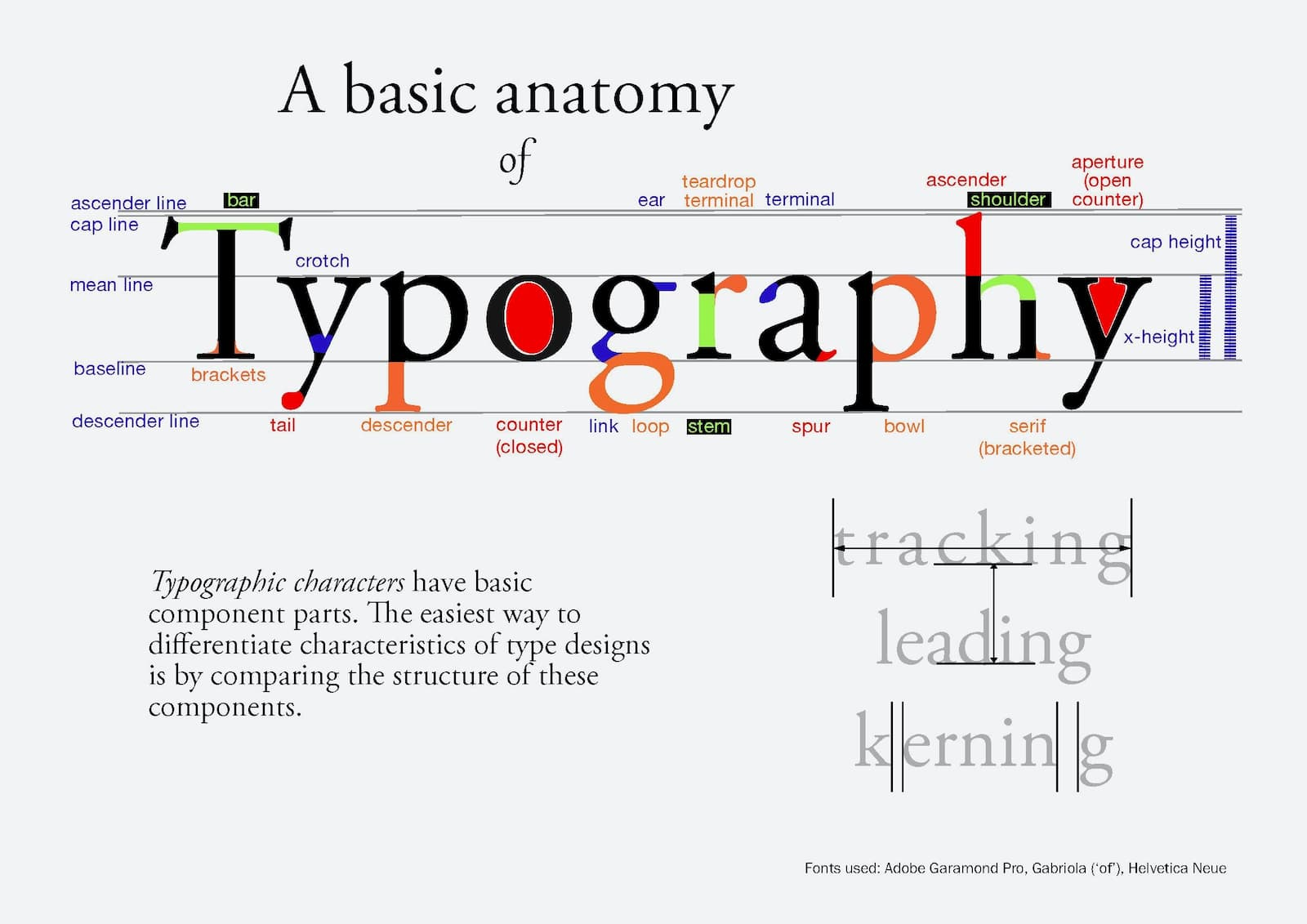 The basic anatomy of a font including an explanation of terms for laying out a typeface.