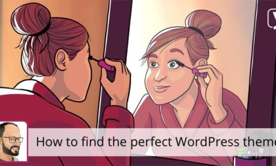 How to find the perfect WordPress theme