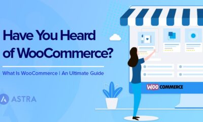 What Is WooCmmerce and Why Should You Use It?