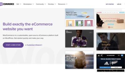 WooCommerce free plugin