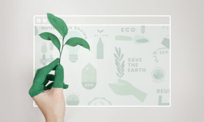 5 Ways to Make Your Website Eco Friendly