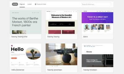 Popular themes list on WordPress.org.
