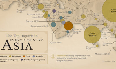 The Top Import for Each Country: Asia
