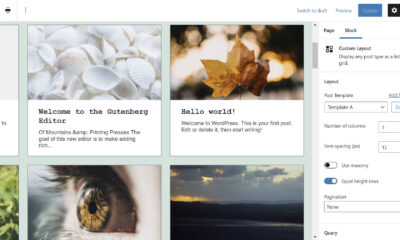 Custom Layouts Plugin Creates a Posts Display System for Both the Classic and Block Editors