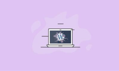 WordPress Vulnerabilities Explained