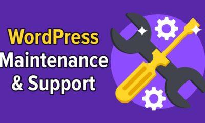 5 Best WordPress Maintenance & Support Services