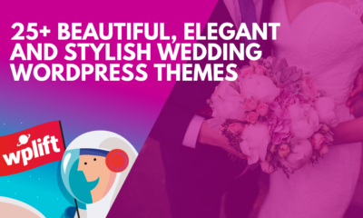 25+ Beautiful, Elegant and Stylish Wedding WordPress Themes