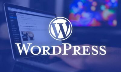 #FunFact: WordPress powers nearly 27% of all websites. #YourWPGuy #WordPress #SEO...