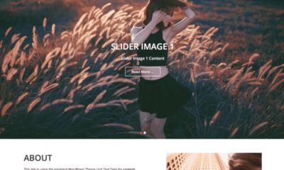 free parallax WordPress themes