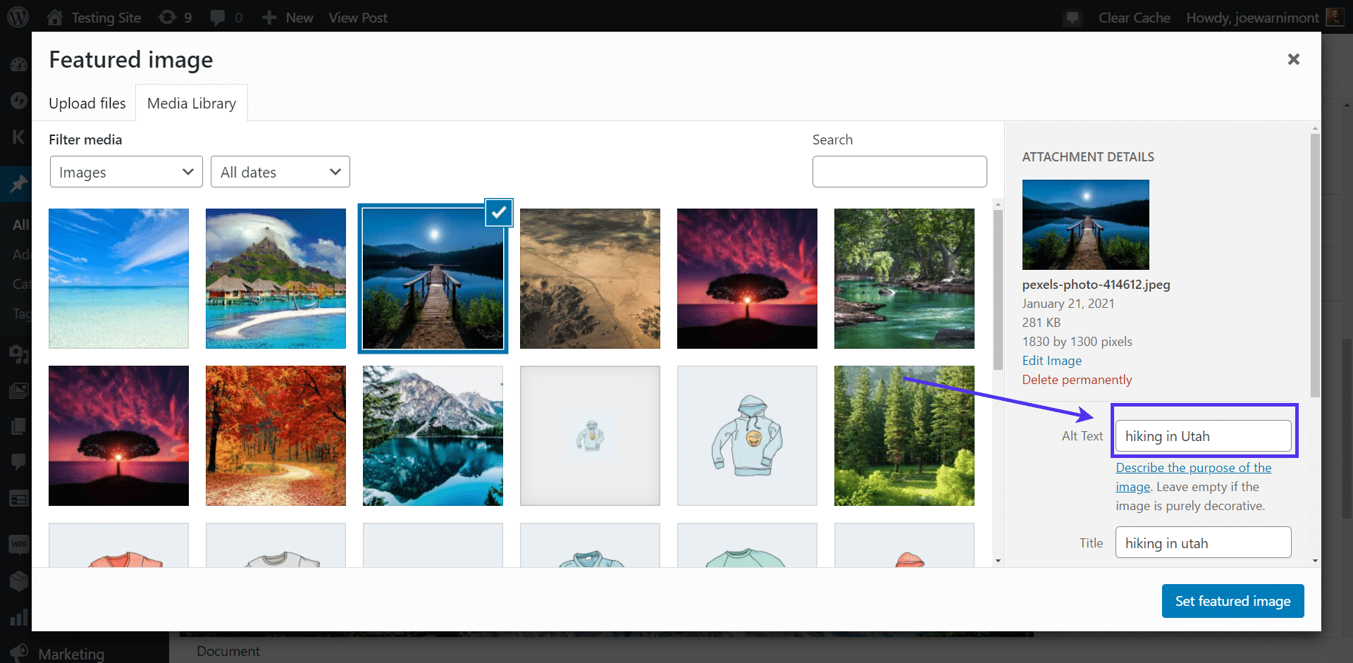 Set the 'alt text' for images