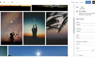 Creating Tiled, Masonry, and Other Image Layouts With Meow Gallery