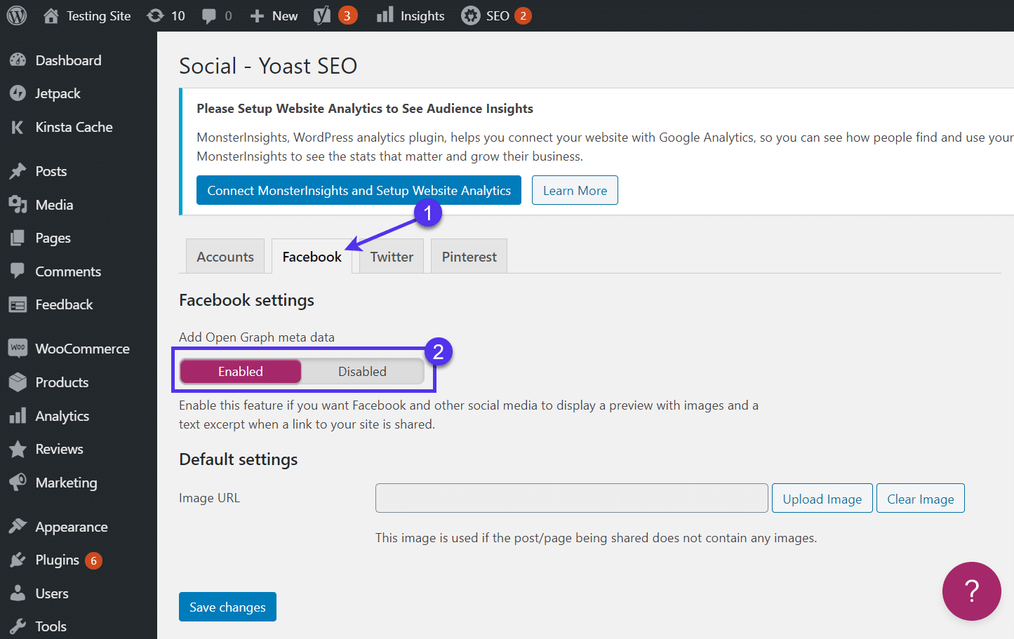 Facebook tab - WordPress featured image not showing