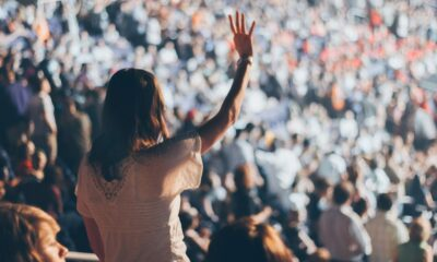 How to Make Your WordPress Agency Stand Out From the Crowd (4 Key Tips)