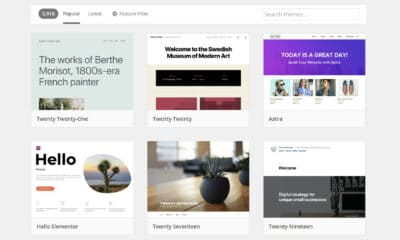 Upcoming Changes and Steps for an Overhauled WordPress Theme Review System