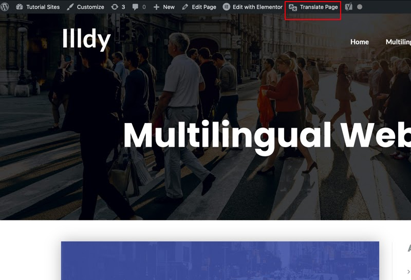 Translating your entire website multilingual
