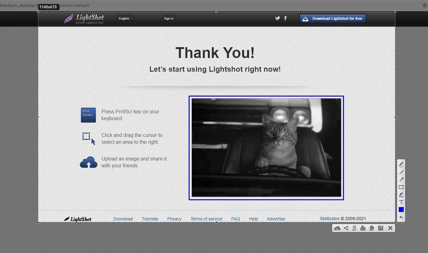 Taking a screenshot with LightShot.