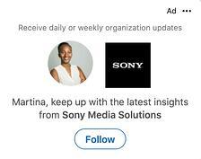LinkedIn Dynamic Follower Ad