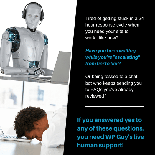 Here at WP Guy, we provide support from live people, never bots! Schedule your consultation with us to learn more....