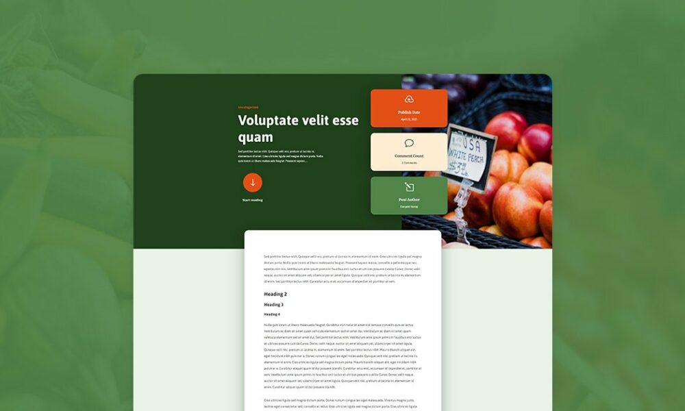Download a FREE Blog Post Template for Divi's Produce Box Layout Pack
