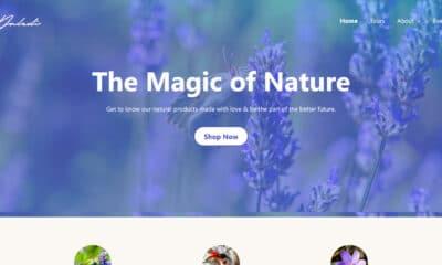 Anariel Design Launches Naledi, a Block-Based WordPress Theme