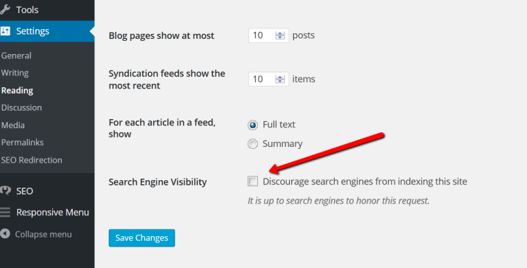 Checking Search Engine Visibility.