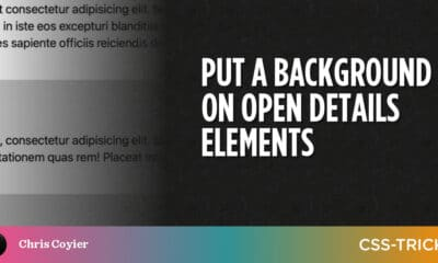 Put a Background on Open Details Elements