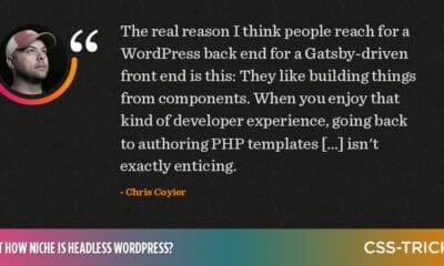 Just How Niche is Headless WordPress?