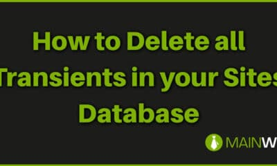 How to Delete all Transients in your Sites Database
