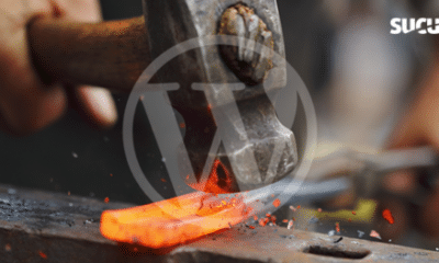 An Overview of Basic WordPress Hardening