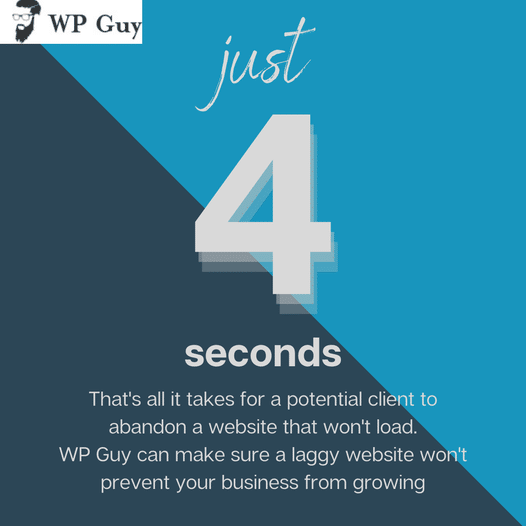 4 seconds is an eternity when you're waiting for a website to load. WP Guy can make sure website lagging won't get in the way between you and potentia...