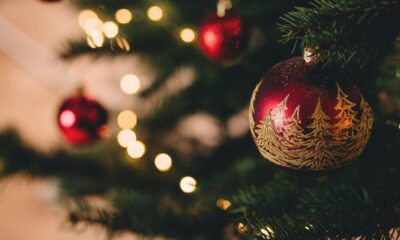 """""""Christmas gives us an opportunity to pause and reflect on the important things around us."""" - David Cameron Our team is wishing you all a Merry Christ..."""