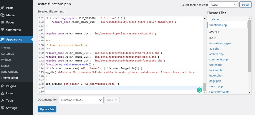 Edit theme function php file