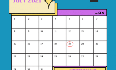 Mark your calendars, because all WP Guy packages include a Monthly Activity Report. This way you can easily track your site's progress with the help o...