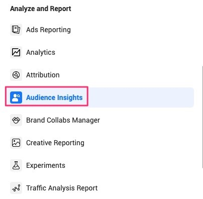 How to access Audience Insights.