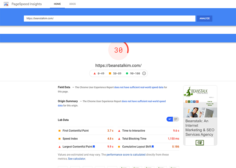PageSpeed Insights on Beanstalk's website.